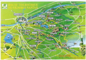 route touristique du vignoble nantais( photo internet)