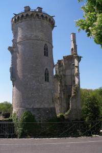 les tours du chateau de Charles 7